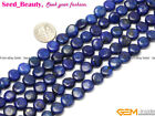 "jewelry making coin gemstone lapis lazuli beads strand 15""  from seed-beauty"