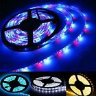 5M 300/600 leds SMD 3528 LED Flexible Fairy Strip Lamp Light RGB Blue White Xmas