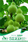 12 Kinds Gourd Seeds Vegetable Seeds Natural Nutritious Delicious HOT