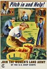 2W16 Vintage WWII Pitch In And Help Women's Land Army War Poster WW2 A1 A2 A3 A4