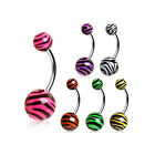 Surgical SteelBelly Bar with UV Coated Zebra Print Balls 1.6mm x 10mm