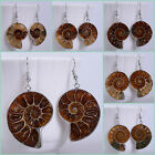 33mm Ammonite fossil dangle earrings