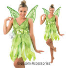 C974 Deluxe Tinkerbell Disney Fairy Halloween Fancy Dress Adult Costume