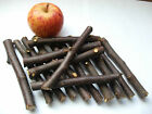 "Dried 6"" Natural APPLE WOOD Pet Chew Gnaw Sticks Treats All Organic + Dry Leaves"