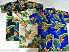 "Funky Must Have"" Birds of Paradise""Stag Night Beach Bar b que Parties S M L XL"