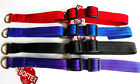 Softex® & Brass Half Check Adjustable Martingale Dog Collar Colour & Size Choice