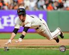 Buster Posey San Francisco Giants 2013 MLB Action Photo (Select Size)