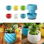 Mini Colourful Round Plastic Plant Flower Pots Home Office Decor Planter 7CM
