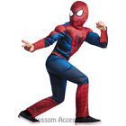 CK291 The Amazing Spiderman 2 Deluxe Muscle Chest Child Superhero Fancy Costume