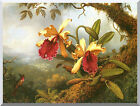 Stretched Canvas Art Print Orchids and Hummingbird by Martin Johnson Heade Repro