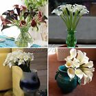 6/12 HEADS LATEX IVORY FLOWERS BOUQUETS CALLA LILY WEDDING HOME DECOR 9 Colors