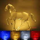 New Transparent Horse Adornment 4-colour LED Nightlight Wall lamp With switch