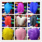 wholesale! 5-200pcs beautiful ostrich feathers 6-28 inche/15-70cm Free Shipping