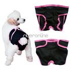 Female Girl Cute Pet Dog Physiological Sanitary Pants Shorts Diaper Underwear