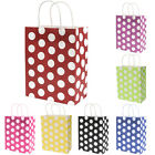 Large 10X Colorful Polka Dot Recyclable Loot Handle Kraft Paper Bag Party Gift