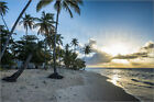 Poster / Leinwandbild Sunset at the beach of Pigeon Point, Toba... - M. Runkel