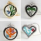 HOT Handmade Silver Gold Dried Flower Glass Floating Charms Locket Necklace Gift