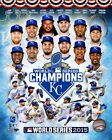Kansas City Royals 2015 World Series Champions Team Photo SK083 (Select Size)