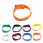 New Fashion Sexy Mens Male Adult Underwear Thong mention Ring Bracelet GOUS