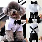 Cute Dog Pet Clothing Gentleman Tuxedo Custome Jumpsuit Coat for Small Teddy