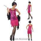 CL708 Funtime Flapper Ladies 1920s Roaring 20s  Dress Costume Charleston Gatsby
