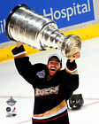 Andy McDonald Anaheim Ducks Stanley Cup Photo IK039 (Select Size)