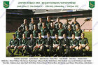 SOUTH AFRICA 1995 RUGBY WORLD CUP WINNERS TEAM PHOTOGRAPH or POSTCARD