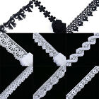 2Yard Black & Off WhiteVictoria Venise Lace Trim Flower Lace DIY Sewing Crafts