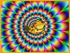 PSYCHADELIC FROG funny T SHIRT Men's All SIZES comedy freaky weird toad NEW acid