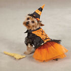 XSmall - Casual Canine - Dog Puppy Halloween Costume - Spellhound Witch