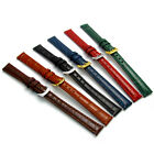 Coloured Padded Croc Grain Leather Watch Band 10mm 12mm 14mm 6 colours! D016