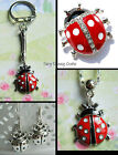 LADYBIRD LADYBUG EARRINGS PIERCED NECKLACE OR KEYRING CHARM BROOCH ENAMEL