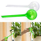 New Handstand Automatic Watering Device System Houseplant Plant Pot Bulb Tool