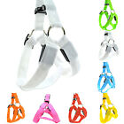 Pet Dog Safety Chest Strap Harness LED Light Flashing USB Rechargeable All Sizes