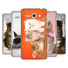 HEAD CASE DESIGNS CATS HARD BACK CASE FOR HUAWEI ASCEND Y530