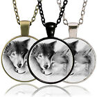 CHIC Newest Vintage Wolf Cabochon Tibetan Silver Glass Chain Pendant Necklace