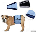 Pet Dog Large Breed Easy Fit Diapers Sanitary Wraps Male Dogs XS-S-M-L-XL