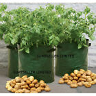 REUSABLE GROW YOUR OWN POTATO SPUDS VEG PLANTER POTATOES BAGS SACK GARDEN PATIO