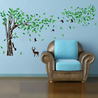 Big tree squirrel bird wall stickers Mural Decal Art DIY Home Room Decor Vinyl