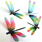 DF013 - Dragonflies - Weddings, Crafts, Bouquets, Decorations, Wall Art