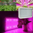 2PCS 1000W Full Spectrum LED Grow Light Hydro Plants Herbs Fruits Growing Lamp
