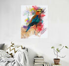 3D Parrot Picture 233 Wall Stickers Vinyl Murals Wall Print Decal Art AJ STORE