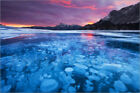 Poster / Leinwandbild Bubbles and Cracks in the Ice with Kista ... - M. Ertman