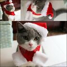 Pet Cat Dog Cap Hat For Puppy Teddy Animal Shapeshift Christmas Holiday Costume