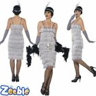 Womens Long Silver Flapper Fancy Dress Costume 1920s Ladies Gatsby Outfit