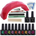 Nail Gel Polish Starter Kit 9W LED Dryer Lamp 80 Color UV/LED Gel Nail Polish
