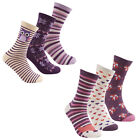 Cottonique Ladies Cotton Rich Animal Design Socks 4-8