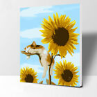"""16""""x20"""" DIY Paint By Number Kits On Canvas Frame Painted Sunflower cat 2382"""
