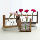 Retro Wooden Frame Hanging Vase Hydroponics Transparent Glass Container