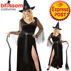 CA716 Rich Witch Sorcerer Wizard Halloween Fairytale Book Week Womens Costume
